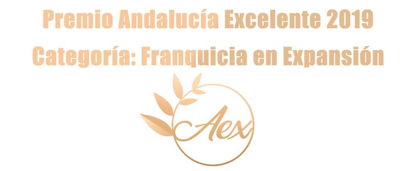 premio excelencia franquicia